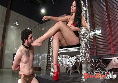Mistress Jasmine's Foot Bitch